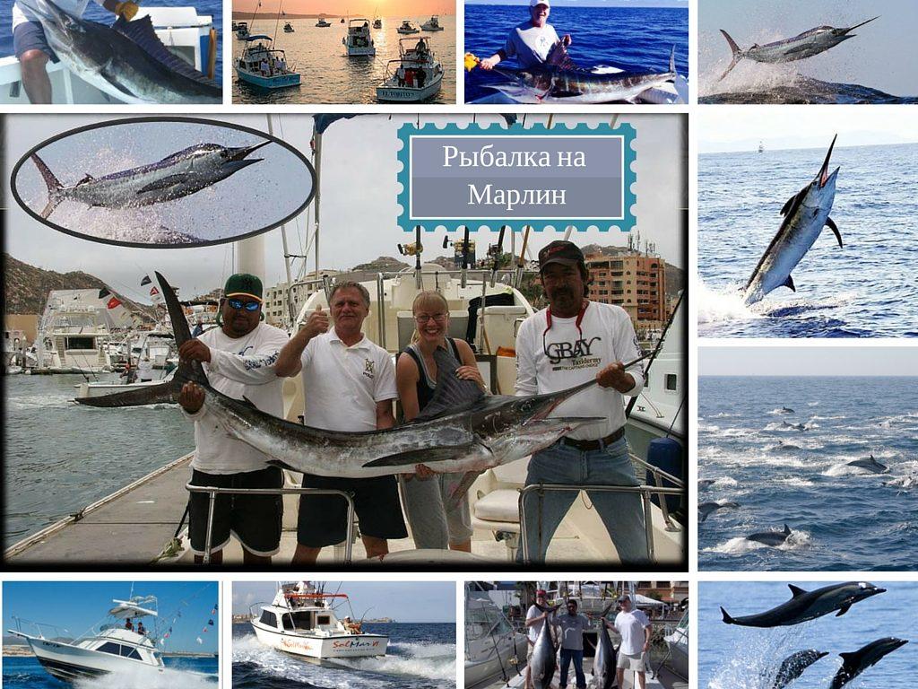 Рыбалка в Кабо Сан Лукас фото