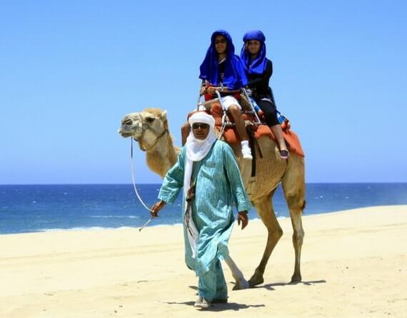 Фото тур на вербдюдах в Мексике