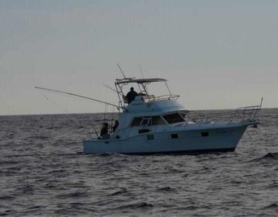 кабо сан лукас рыбалка картинка