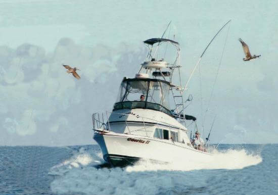 guerita-sportfishing
