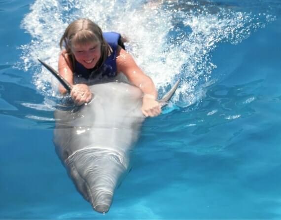 фото плавание с дельфинами