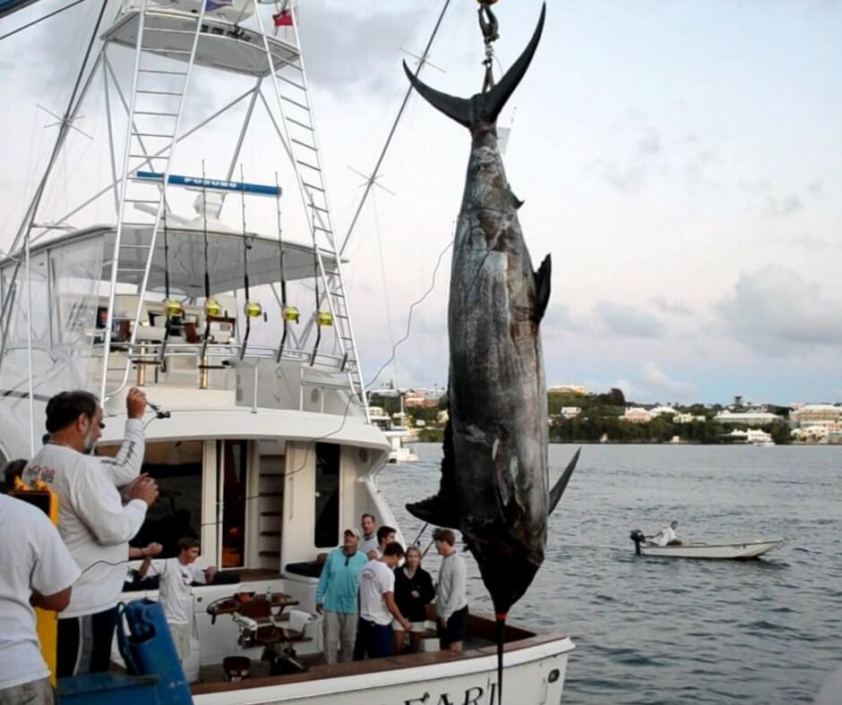 Турнир по спортивной рыбалке в Мексике фото