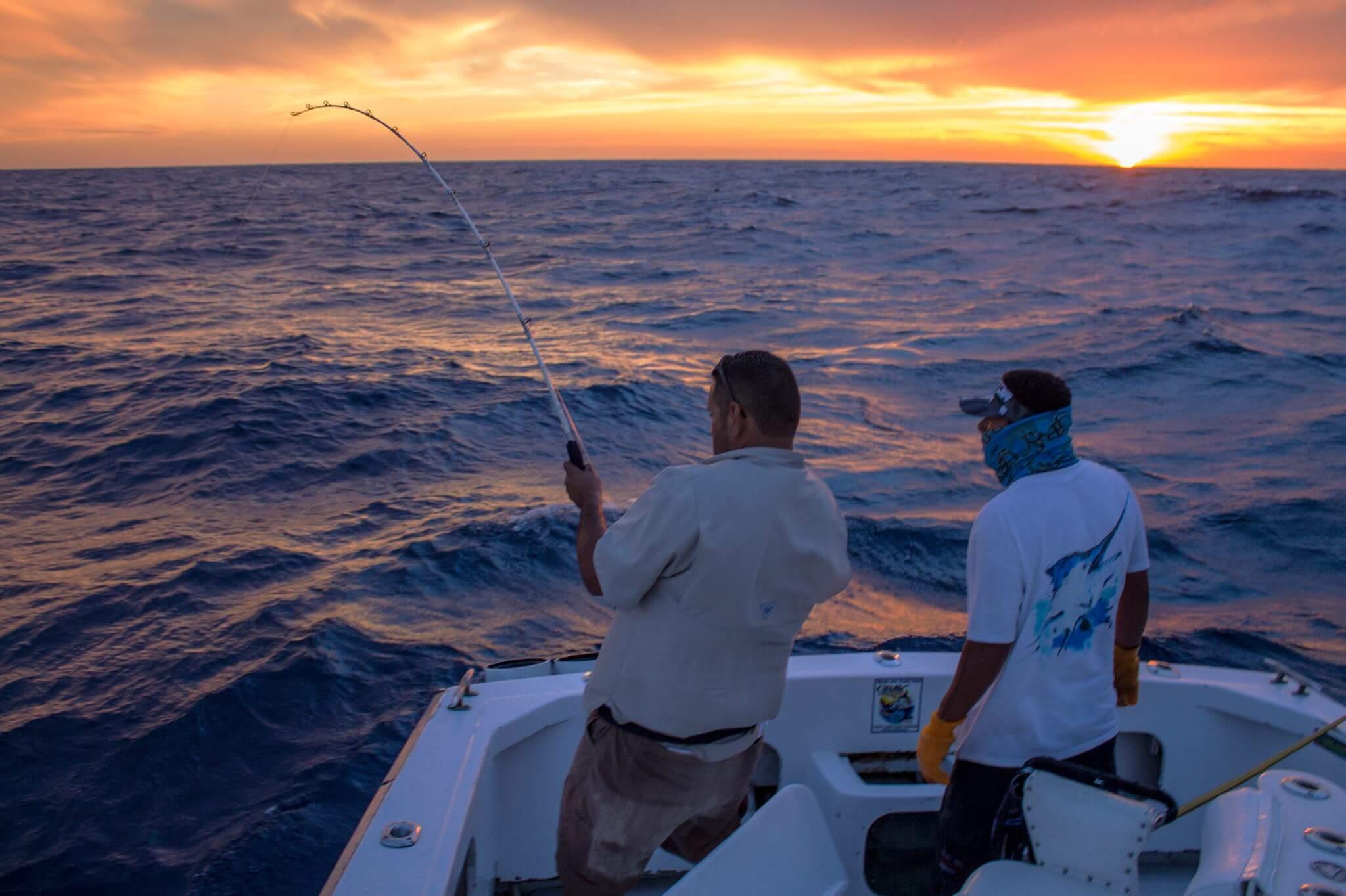 рыбалка на марлина в Лос Кабос