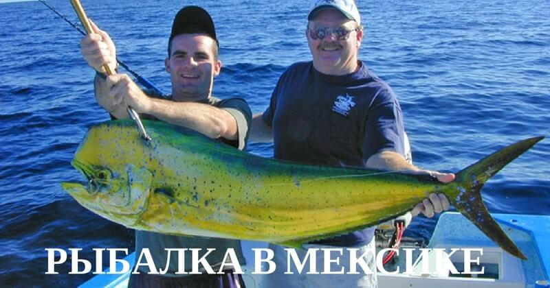 Рыбалка в Мексиканском заливе